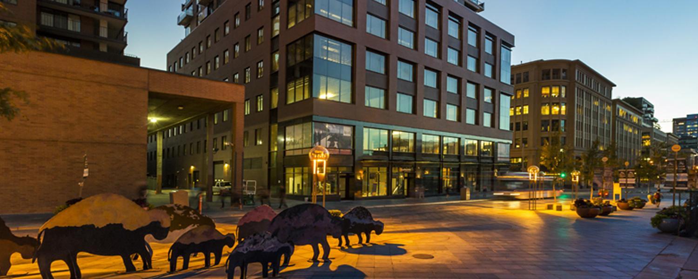 Market street buffalo art